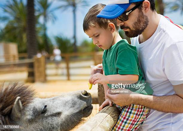 Young father and son feeding a pony