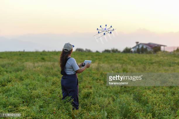 young female farmer spraying her crops using a drone - drone stock pictures, royalty-free photos & images