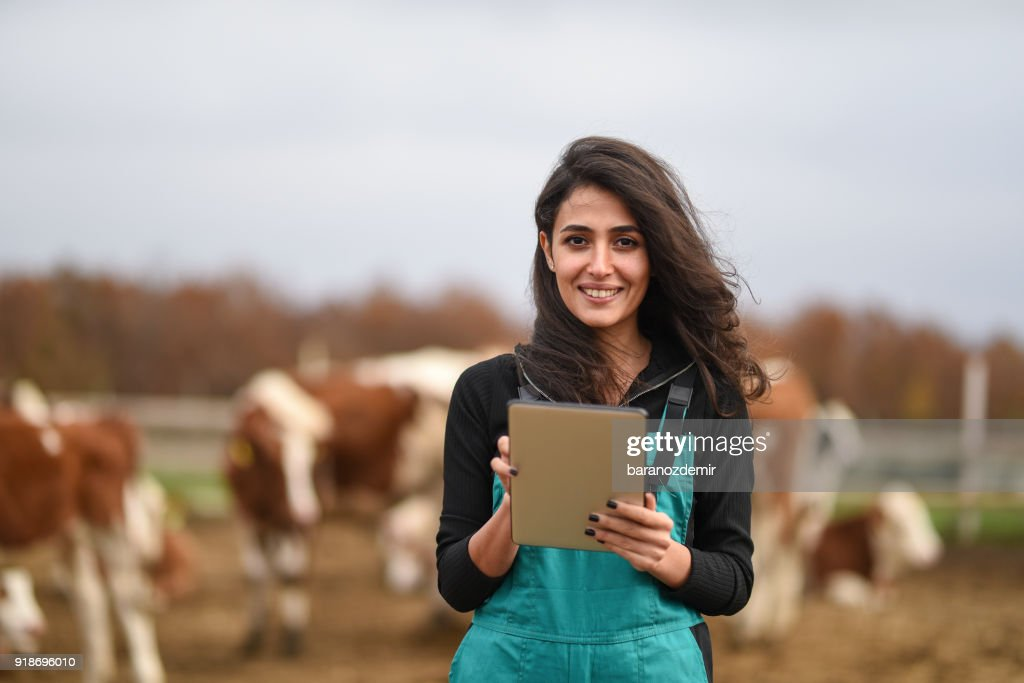 Young female farmer using a digital tablet : Stock Photo
