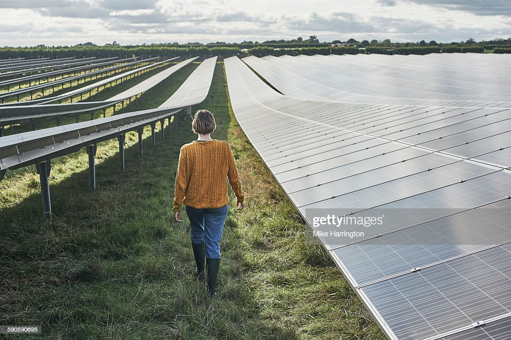 Young female farmer walking through solar farm : Stock Photo