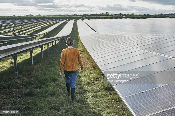 young female farmer walking through solar farm - solarkraftwerk stock-fotos und bilder