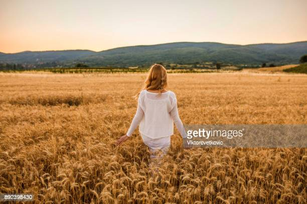young female farmer walking throw wheat field - wheatgrass stock photos and pictures