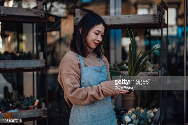 young female florist working in her flower shop - small business stock pictures, royalty-free photos & images