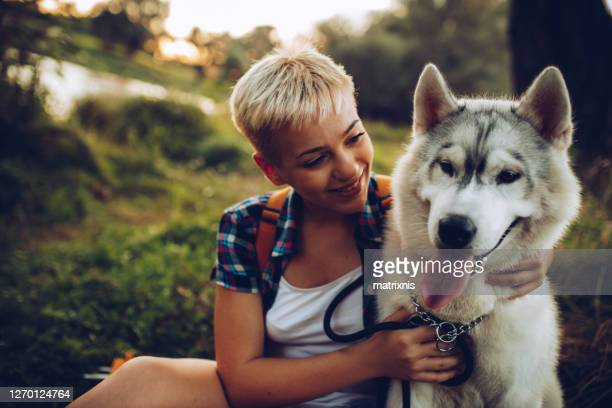 young female girl with her husky dog - husky dog stock pictures, royalty-free photos & images