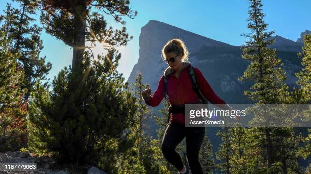 young female hiker ascends mountain through forest - ascent xmedia stock pictures, royalty-free photos & images