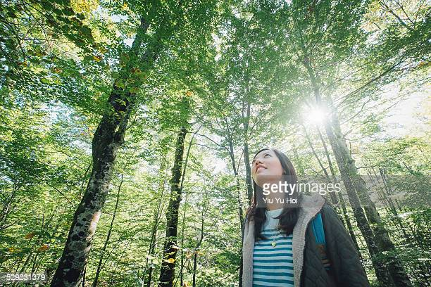 Young female hikers looking up sunbeam in forest