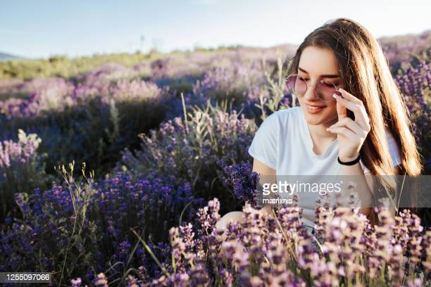 young female in the lavender fields - matrixnis stock pictures, royalty-free photos & images
