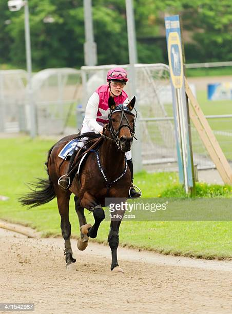 Young female jockey on her horse