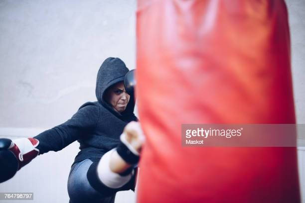 Young female kickboxer kicking punching bag at gym