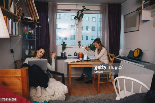 young female roommates studying together in college dorm room - roommate stock pictures, royalty-free photos & images
