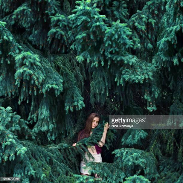 young female standing under huge fir tree, surreal - sprookjesboom stockfoto's en -beelden