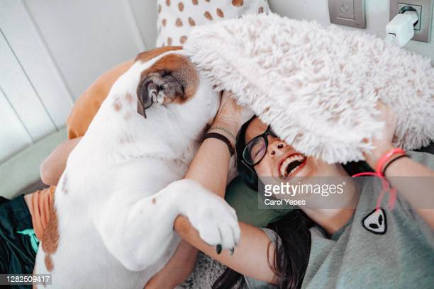 young female stroking domestic dog - affectionate stock pictures, royalty-free photos & images