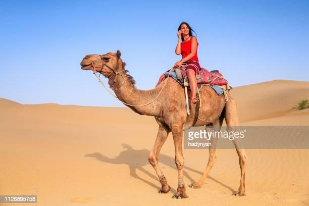 jeune touriste femelle à l'aide de mobile sur un chameau - maroc photos et images de collection