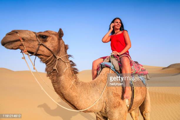young female tourist using mobile on a camel, rajasthan, india - rein stock pictures, royalty-free photos & images