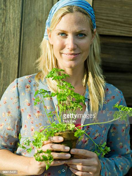 young female with parsley plant - petersilie stock-fotos und bilder