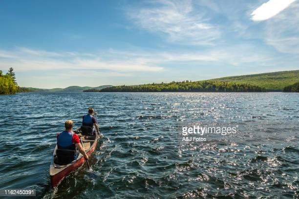 young gay couple canoeing on a lake. - quebec stock pictures, royalty-free photos & images