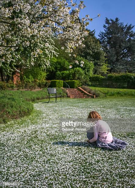 Young girl and cherry blossom