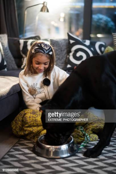 young girl and her dog - dog eats out girl stock pictures, royalty-free photos & images