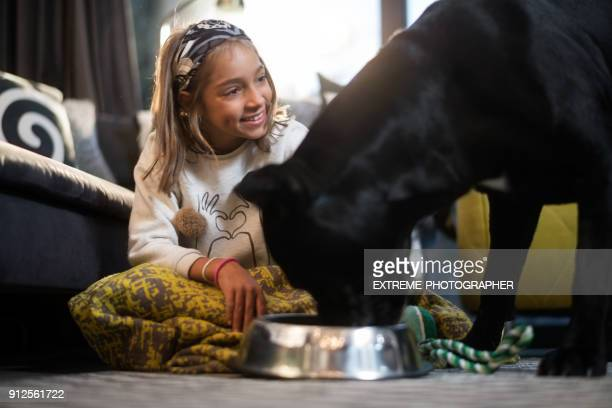 young girl and her dog - dog eats out girl stock photos and pictures