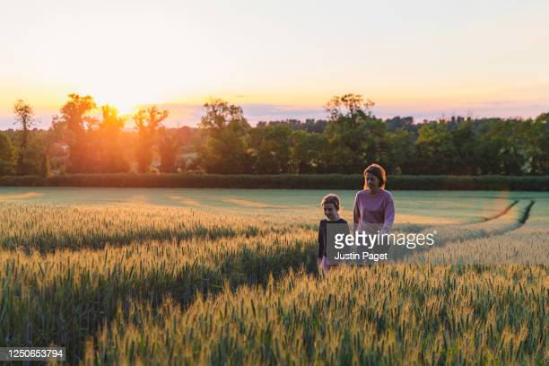 young girl and her mother walk through field at sunset - summer stock pictures, royalty-free photos & images