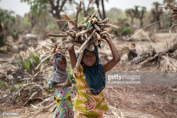 A young girl carries fire wood on the outskirt of the town of Damasak in North East Nigeria on April 25 2017 as thousands of Nigerians who were freed...