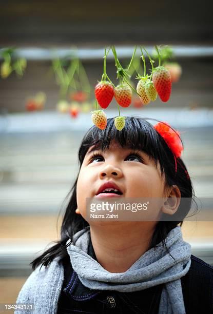Young girl choosing strawberries