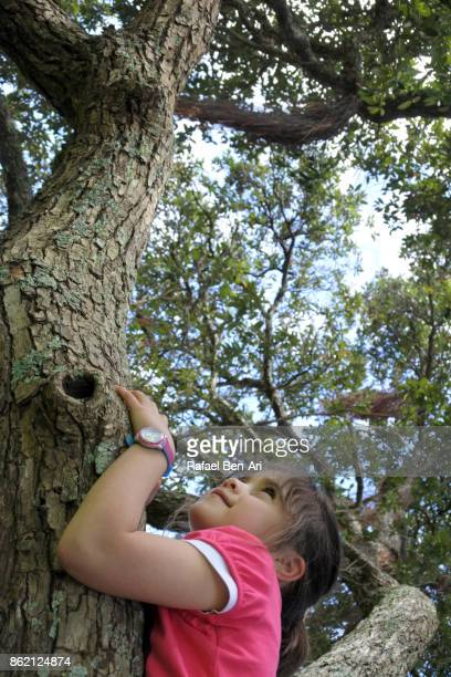 Young girl climbs on a tree