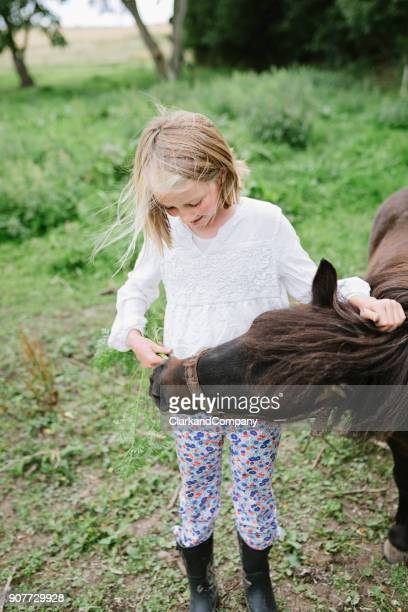 Young Girl Feeding Her Horse Fresh Carrots.