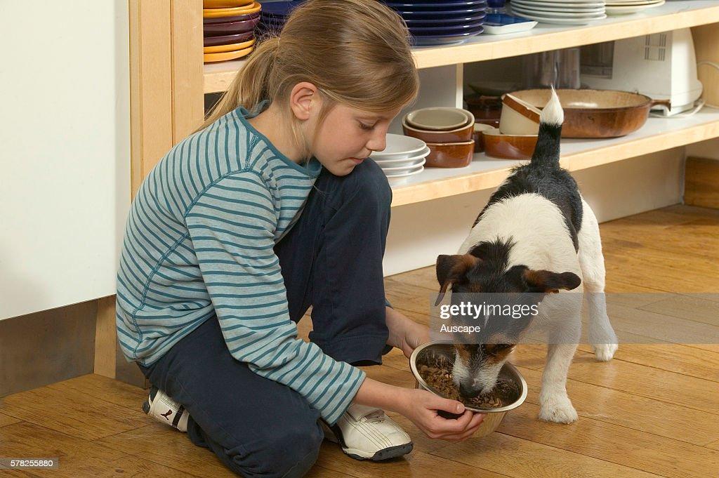 Young girl feeding small dog. : News Photo