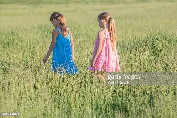 A young girl following her sister, walking through a sunny field