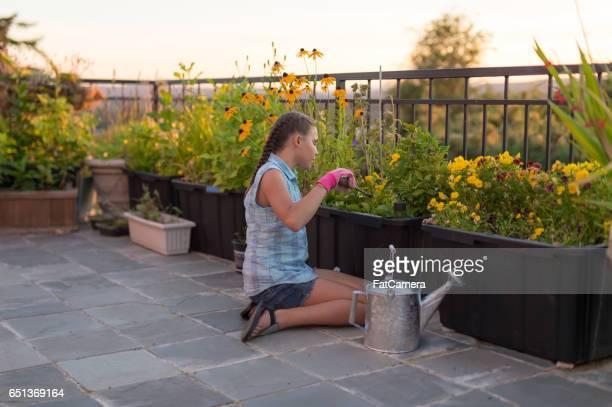 Jeune fille dans le lit de la fleur de jardinage