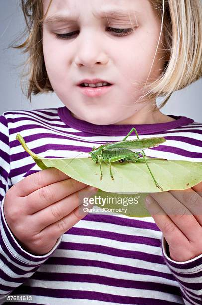 Jovem Menina ficar assustado segurando grandes Gafanhotos em uma folha