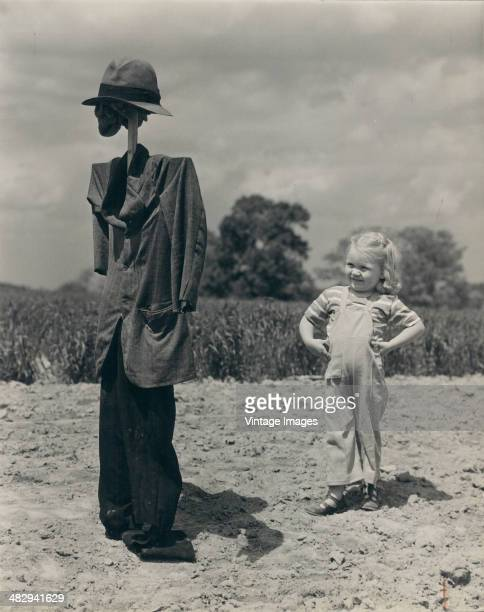 A young girl hands on her hips stands next to a scarecrow in a field 1948