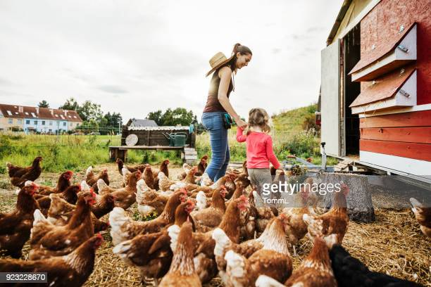 Young Girl Having Fun Taking Care Of Chickens With Mother