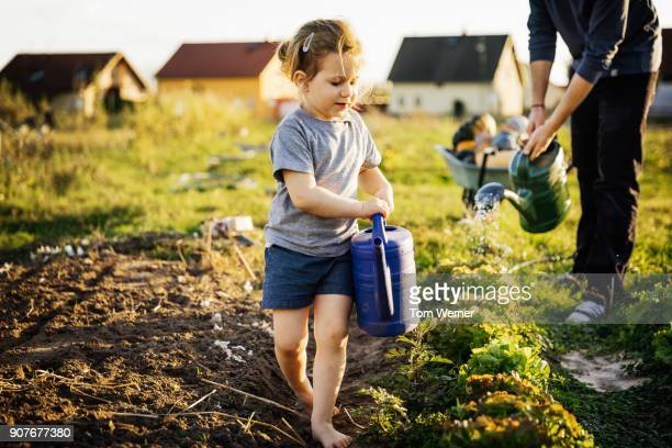 young girl helping father water plots on small urban farm - green shorts stock photos and pictures