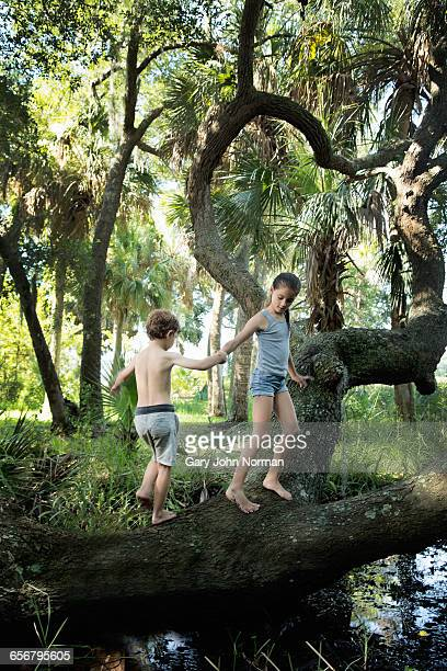 Young girl helps boy to climb on fallen tree