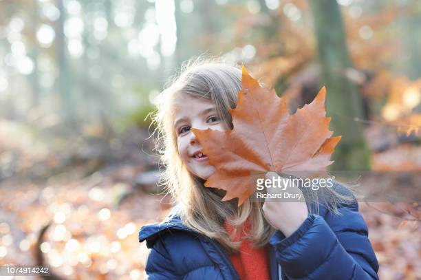 Young girl hiding behind an autumn leaf