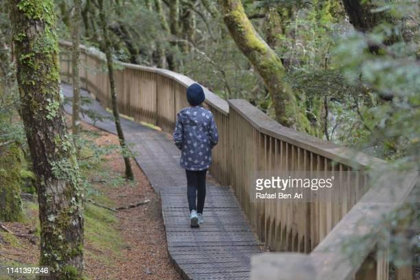 young girl hiking at  cradle mountain-lake st clair national park tasmania australia - rafael ben ari fotografías e imágenes de stock