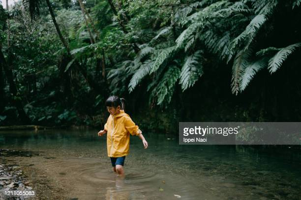 young girl hiking in jungle river, okinawa, japan - reality fernsehen stock pictures, royalty-free photos & images