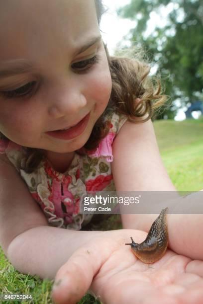 young girl holding a slug in a garden - limace photos et images de collection