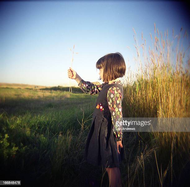 Young girl holding blades of wheat