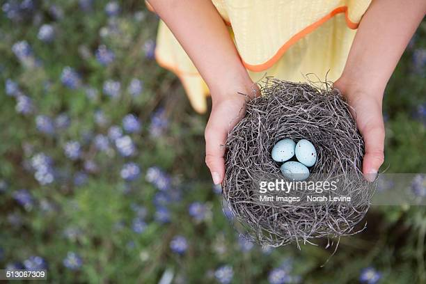 A young girl holding out a woven bird nest with three small eggs.
