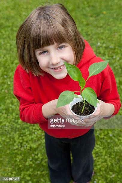 Young Girl Holding Pepper Plant