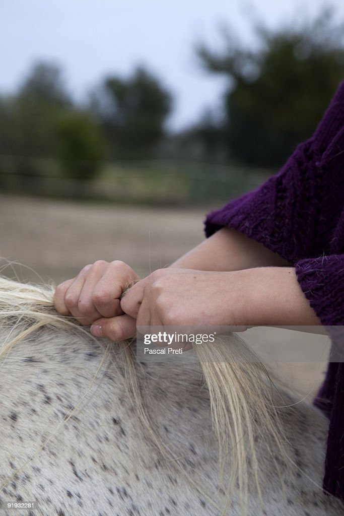 young girl holding the crane of a horse : Stockfoto