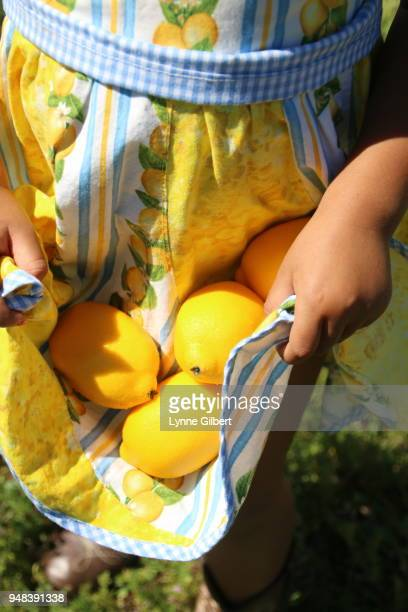 a young girl holds fresh lemons in the apron of her dress during spring - sorrento stock pictures, royalty-free photos & images