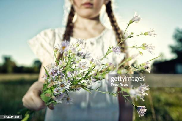 young girl in a field holding flowers - robb reece stock-fotos und bilder