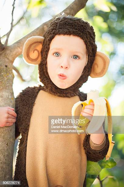 young girl in a monkey costume sitting in tree eating banana - monkey suit stock pictures, royalty-free photos & images