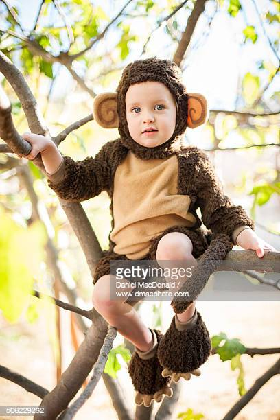 Young girl in a monkey costume sitting in tree