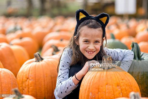 young girl in cat costume in a pumpkin patch - cat costume stock photos and pictures