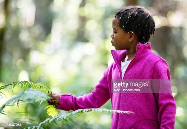 a young girl in the woods - fleecejas stockfoto's en -beelden